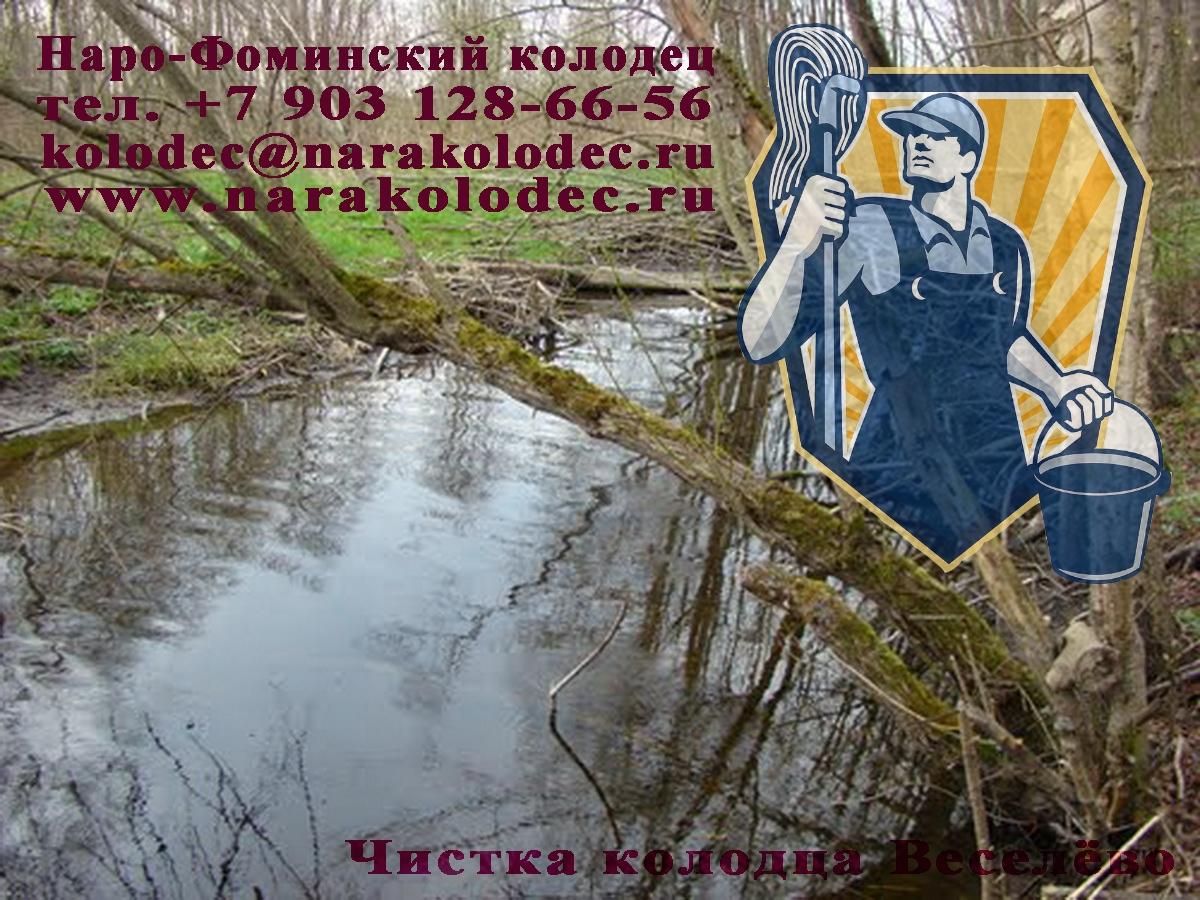 Комплексная чистка колодца Весёлово